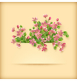 Floral greeting card pink cherry blossom flowers vector image