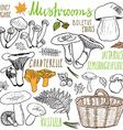 Mushrooms sketch doodles hand drawn set Different vector image