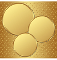 golden plates vector image vector image