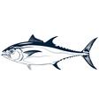 graphic tuna vector image