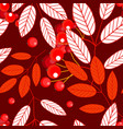 autumn seamless pattern with openwork ashberry vector image