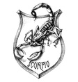 Scorpion heraldry scorpio zodiacal sign vector image