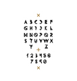 Latin alphabet with numbers vector image