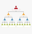 hierarchy in company organization chart tree vector image