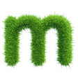 small grass letter m on white background vector image