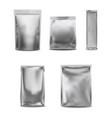 white blank foil pack plastic bag set vector image