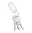 Blank tag and keys vector image