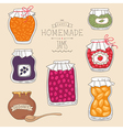 home made jams vector image