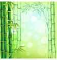 Background bamboo vector image