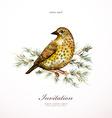 Watercolor painting wild bird on branch pine vector image