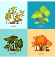 Forest Design Concept vector image