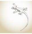 Lizard Hand drawn vector image