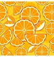 Citrus Fruit Slices background vector image