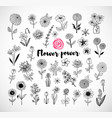 set of doodle sketch flowers on white background vector image