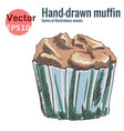 hand-drawn chocolate muffin isolated on a white vector image