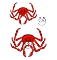 Red marine crab with a happy smile vector image vector image