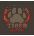 Tiger footprint and fire on dark background vector image