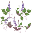 Legumes set vector image
