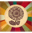 Sunflower vintage background vector image