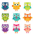 Isolated cartoon owls collection vector image