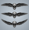 Three evil skulls with wings vector image