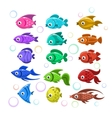 Funny colorful fishes vector image