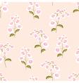 Nemesia flowers seamless pattern vector image