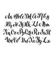 Handwritten calligraphy symbols vector image