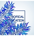 Summer time of tropical palm vector image