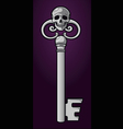 skeleton key vector image