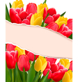 Holiday background with colorful flowers and vector image vector image