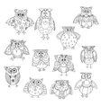 Funny owl silhouettes outline with cute feathering vector image