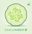 slice of fresh cucumber isolated on a background vector image