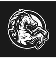 Wild horse logo symbol vector image