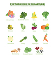Folate vector image