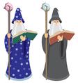 wizard vector image