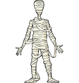 ancient egyptian mummy vector image