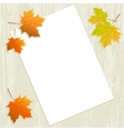 Maple leaves with paper sheet on wooden background vector image
