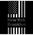 NY t-shirt design vector image