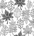 Black And White Seamless Pattern Of Patterned vector image