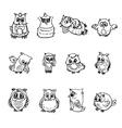 Set of owl vector image