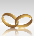 Jewelry two golden ring vector image