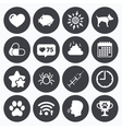 Veterinary pets icons Dog paw syringe signs vector image