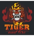 Tiger head hand and fire - vector image