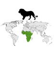 lion distribution vector image