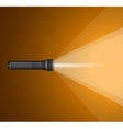beam of light from flashlight Black metal vector image