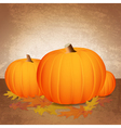 Fall Pumpkins and Leaves vector image