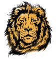 Lion Head Stencil vector image