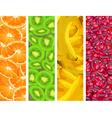 fruit background four elements vector image