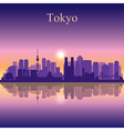 Tokyo silhouette on sunset background vector image
